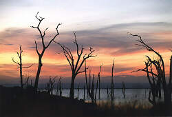 Senkwe, Lake Kariba (courtesy Duncan Sugg)