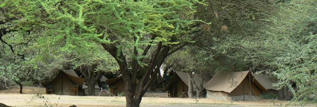Private camp Ngorongoro Crater