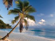 Royal Seychelles honeymoon