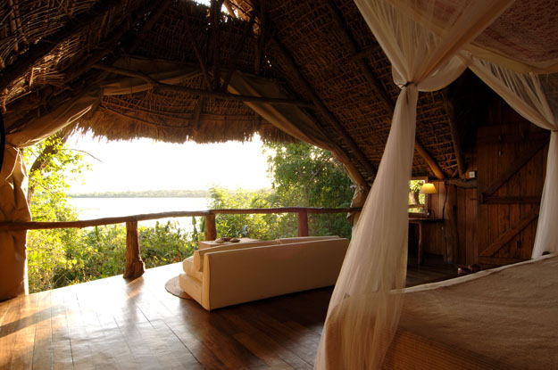 Explore Selous Game Reserve and exotic Zanzibar