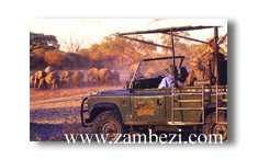 Game drive at The Hide (courtesy Tracy Duvenhage)