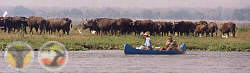 Canoeing the lower Zambezi