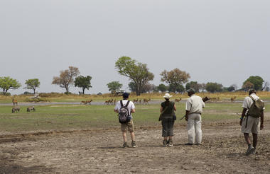 Days 2-3 Footsteps in Okavango Delta
