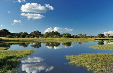 Day 8 - Hwange National Park