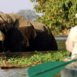 Tamarind Canoe Safaris by Baileyphotos courtesy James Varden of Natureways