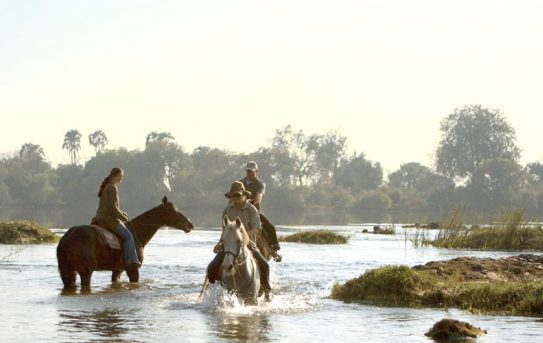 Vic Falls Horse Trails
