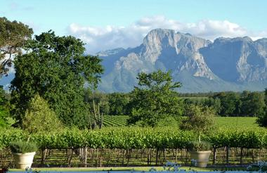 Day 5 - Drive to Stellenbosch