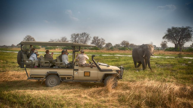Rob Barber on a privately guided safari in Botswana courtesy Stuart James Arnold