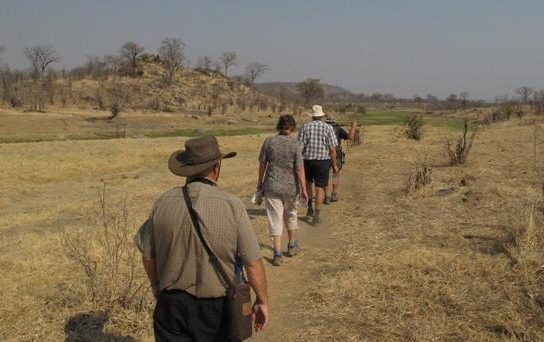 Footsteps in Hwange from Victoria Falls.