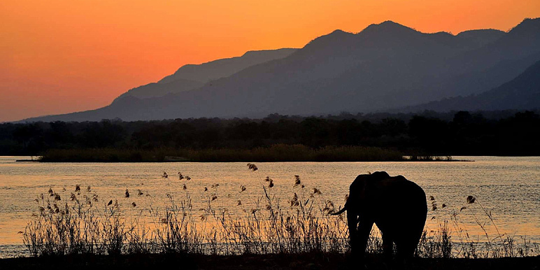 Mana Pools by Noel Smith