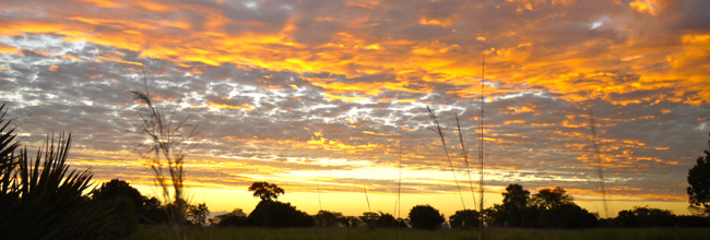 sunset gorongosa