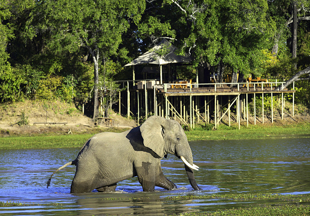 Lodges located on the edge of permanent water ways guarantee good game viewing from dawn to dusk in the remoter safaris spots in East, southern and Central Africa
