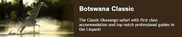 Botswana's Classic Okavango safari over 8 days with first class accommodation and top notch professional guides in the Linyanti