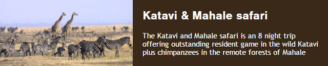 Katavi and Mahale safari is an 8 night trip offering outstanding resident game in the wild Katavi plus chimpanzees in the remote forests of Mahale