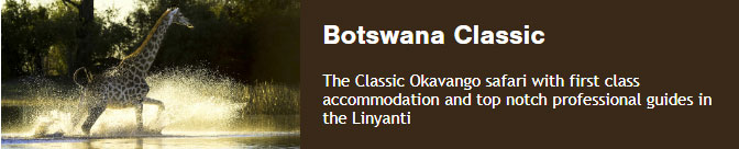 Botswana Classic The Classic Okavango safari with first class accommodation and top notch professional guides in the Linyanti