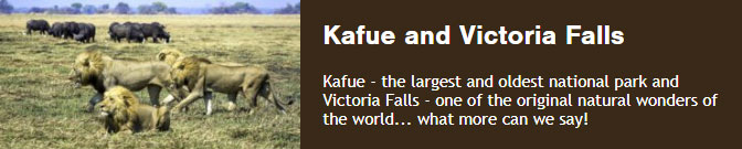 Kafue - the largest and oldest national park and Victoria Falls - one of the original natural wonders of the world... what more can we say!