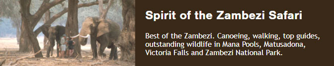 Best of the Zambezi. Canoeing, walking, top guides, outstanding wildlife in Mana Pools, Matusadona, Victoria Falls and Zambezi National Park.