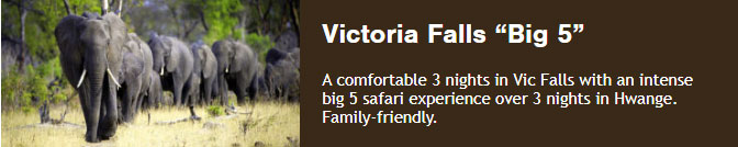 "Victoria Falls ""Big 5"" A comfortable 3 nights in Vic Falls with an intense big 5 safari experience over 3 nights in Hwange. Family-friendly."